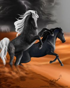 """""""The Asterion horses, Kasida and Hisli. """"It's an Asterion horse, """" Ansel breathed, her red-brown eyes growing huge. The horse was pitch black, with dark eyes that bored into Celaenas own. She'd heard of Asterion horses, of course. The most ancient..."""