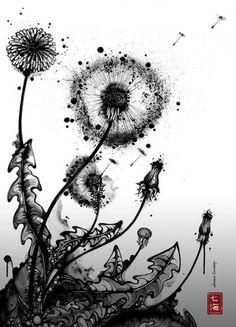 dandelion  black  white  vegetal