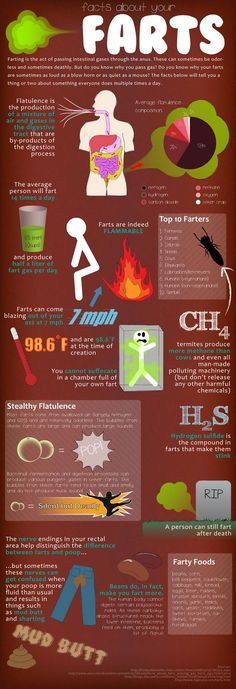Facts About Your Farts.just in case you were wondering.notice how many times a day you are supposed to fart omg so funny lol Health And Wellness, Health Fitness, Health Care, Oral Health, Facts You Didnt Know, E Mc2, Healthy Tips, Stay Healthy, Healthy Women