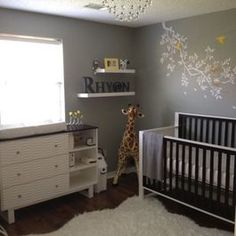 Grey Nursery Design, Pictures, Remodel, Decor and Ideas