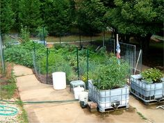 Appropriate methods for drylands: sunken gardens and wicking beds made from IBC containers (International Bulk Containers).