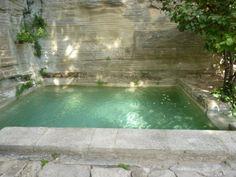 Plunge pool at Le Jardin de la Louve, Bonnieux, France.