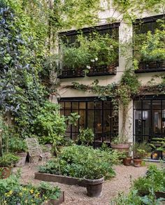 Back Gardens, Outdoor Gardens, Outdoor Rooms, Outdoor Living, Dream Garden, Home And Garden, Merci Paris, Small Garden Design, Backyard Landscaping