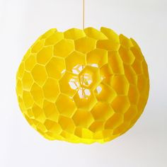 A Delicious Honeycomb Lamp designed by David Trubridge found on http://www.homedosh.com/search/coral+lamp