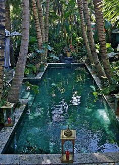 Exotc Hippie Chic Living- tropical swimming pool