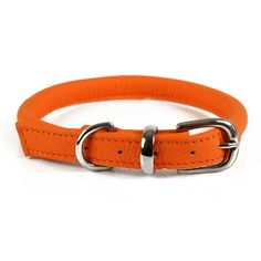 cute orange rolled leather dog collar
