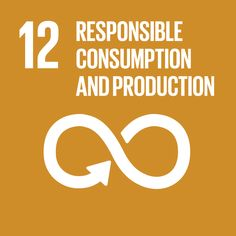 UN Sustainable Development Goal 12: Responsible Consumption and Production