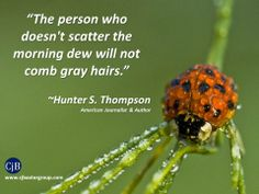"""The person who doesn't scatter the morning dew will not comb gray hairs.""  ~Hunter S. Thompson American Journalist & Author"