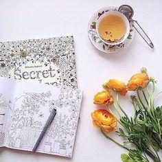Johanna Basford - Secret Garden online now at www.typo.com