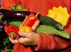 www.rustica.fr - Choisir les légumes et les petits fruits au jardin vivrier