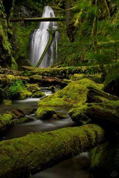 NATURE | falls | serene | peaceful | calm | tranquil | nostalgic | mystical | nymph |