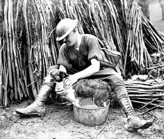 WWI, Feb 1918; A Canadian giving his pet a much needed wash. Library and Archives Canada MIKAN no. 3194334