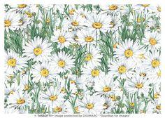 Papier décoratif italien de la qualité supérieure - 50 cm x 70 cm 85 g/m2 - Margherite