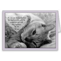Loss of Pet Cat Sympathy Card Cuddly Cat on Pillow