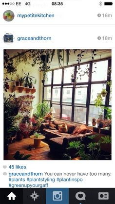 Love all the plants - especially on the beam