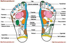 Points de massage des pieds