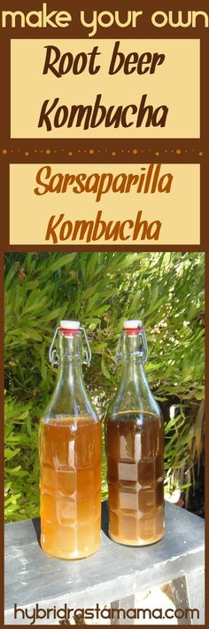 Looking for a fun and deliciously unique spin on kombucha? Love the flavors of root beer and sarsaparilla? Then you simply must try your hand at making my game-changing root beer kombucha and sarsaparilla kombucha. Created by HybridRastaMama.com
