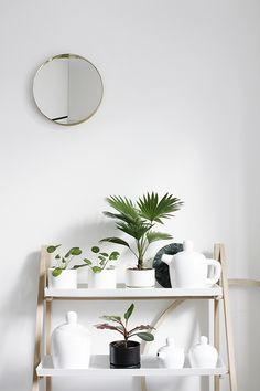 The Design Chaser: Interior Styling | Clean + Green for the New Year