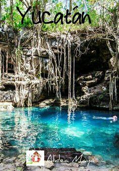 YUCATAN EN 7 DIAS Cenotes de San Antonio Mulix #AldeaMaya #Mulix #Yucatan  www.facebook.com/aldeamayatouroperador