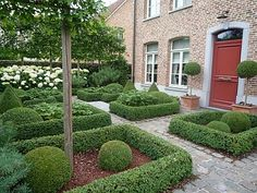 like the little border hedges