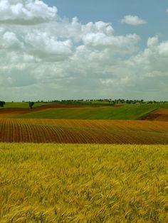 Fotografia de Luís Reininho, Baixo Alentejo, Portugal. www.casanaaldeia.com