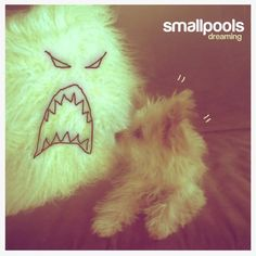 "Look no further. Here's your summer hit. Smallpools' ""Dreaming."" Get into it. http://allthingsgomusic.com/introducing-smallpools"
