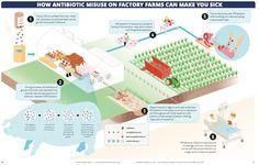 Rural Development: Antibiotics in Factory Farming