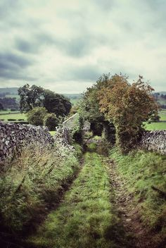 Near Hartington in the Peak District. A lovely part of the country. Looks like the Shire