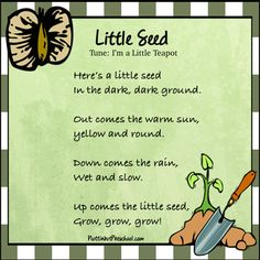 I'm a Little Seed Grow Spring Song Here's a little seed in the dark, dark ground. Out comes the warm sun, yellow and round. April Preschool, Preschool Garden, Preschool Music, Music Activities, Preschool Themes, Preschool Lessons, Spring Activities, Preschool Classroom, In Kindergarten