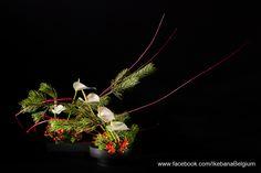 Christmas decoration Enjoy your Christmas Preparation Geniet van de voorbereidingen voor Kerstmis Ikebana: Ilse Beunen Photography: Ben Huybrechts #ikebana #christmas