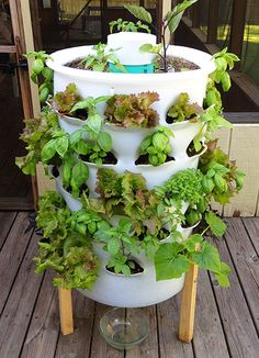 This idea looks really cool for the garden. Uses kitchen scraps and worms to compost. Garden Tower at 14 days Growth