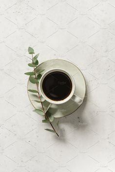 Cup of black coffee on a white textured table with a branch of eucalyptus. Coffee Shot, Coffee Love, Coffee Cups, Flat Lay Photography, Coffee Photography, Food Photography, Black Cofee, Coffee Flatlay, Coffee Pictures