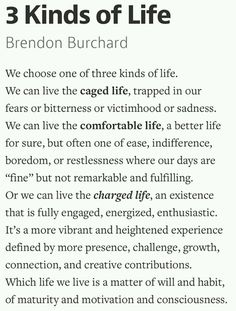 "I enjoyed his book ""The Motivation Manifesto"", but I love his pod casts. Check him out for free at iTunes. This is what I've been listening to on my morning commute. Three kinds of life - Brendon Burchard"