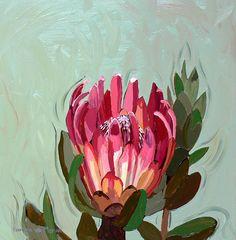 Title: Protea Compacta Medium: Oil paint on canvas Size: x - Modern Protea Art, Protea Flower, Australian Native Flowers, Canvas Art, Canvas Size, Oil Painting Flowers, Moon Art, Simple Art, Types Of Art
