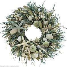 Many people venture to the coast to escape the snow and chill thats common during the holidays. But even if traveling is not an option or if you just love the beach lifestyle you can bring a little. Coastal Wreath, Coastal Christmas Decor, Seashell Wreath, Beach Christmas, Seashell Crafts, Beach Crafts, Coastal Decor, Christmas Crafts, Christmas Decorations