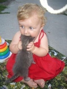 This Baby is gonna eat this kitten.Click the picture to see more cute pictures