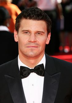David Boreanaz Photos Photos - Celebrities arriving at the Annual Primetime Emmy Awards, Nokia Theatre, Los Angeles, CA. - The Annual Primetime Emmy Awards - Arrivals David Boreanaz, Bones Actors, Hot Vampires, Neil Patrick Harris, Emily Deschanel, Alyson Hannigan, How To Draw Hair, Celebrity Babies, Buffy