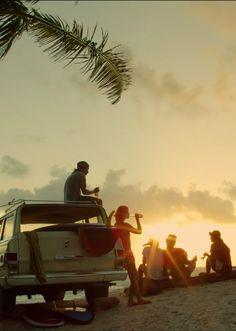 summer. summer evening. sunset. beach. palms.
