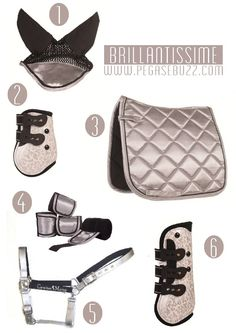All that glitters - Want this set for Arnie - #bigboybigbling www.pegasebuzz.com | Equestrian Fashion : Brillantissime