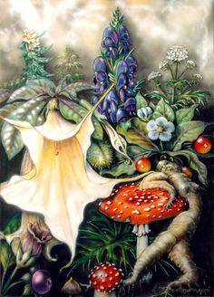 poisonous plant artwork