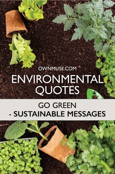 Environmental Quotes: Go Green Sustainable Messages - OwnMuse Top Quotes, Words Quotes, Native American Proverb, Deep Love, Tomorrow Will Be Better, Mother Teresa, Save The Planet, Go Green, Mother Earth