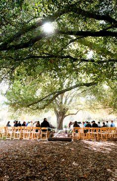 Inexpensive Wedding Venues In Nj Miami Wedding Venues, San Diego Wedding Venues, Affordable Wedding Invitations, Luxury Wedding Venues, Inexpensive Wedding Venues, Wedding Locations, Summer Wedding Guests, Wedding Spot, Wedding Ideas