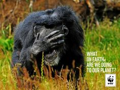 What on earth are we doing to our planet? WWF