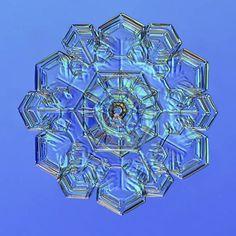 Nature's wondrous beauty: AMAZING photos of snowflakes under the ...