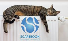 NEW BOILERS available from as little as 84p with NO DEPOSIT! http://scarbrook.co.uk/grimsby.html