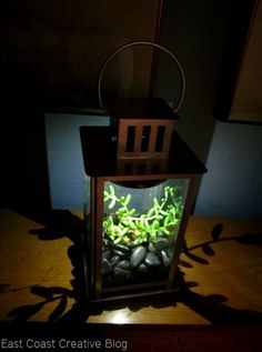 Solar power -                                                      DIY solar powered sun jar. This is pretty sweet.