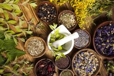 2016 CSW (Community Supported Wellness) Program | emery herbals