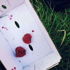 ausgeträumter himbeertraum.  #boxdorf #sommersonnestrand