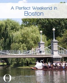 A Perfect Weekend in Boston: The Boston Public Garden is so enchanting!