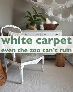 white carpet that stays clean